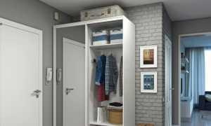 Шкаф купе в маленькую прихожую фото дизайн